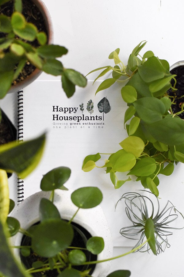 Happy Houseplants ebook