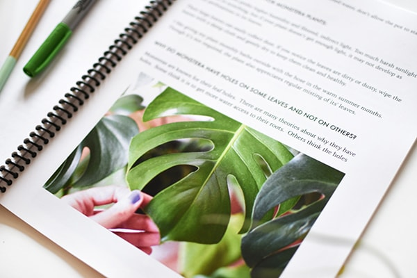 Monstera Leaf Happy Houseplants ebook