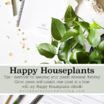Happy Houseplants ebook launch
