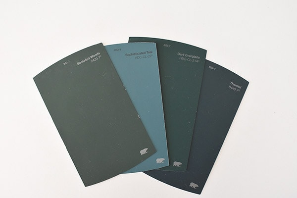 Master Bedroom Paint samples