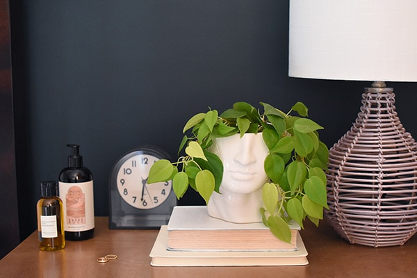 Pothos Head Vase Nightstand