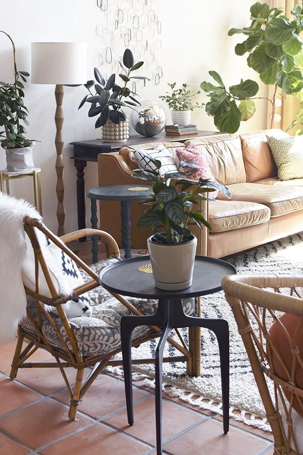 Minimalist Room with plants