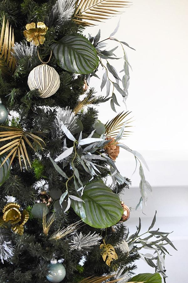 Plant Christmas Tree
