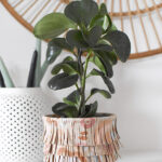 Painted Fringe Leather Planter Pot