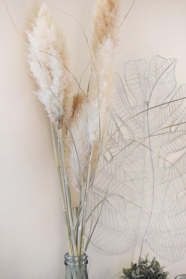 Pampas Grass Decorative