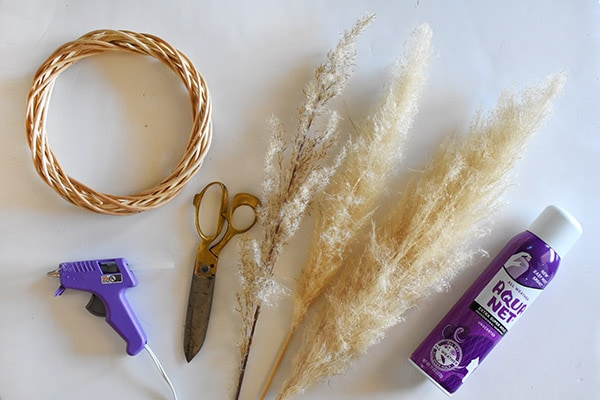 Pampas Grass Wreath supplies