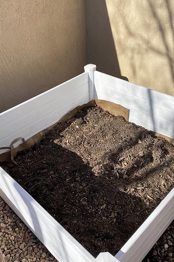 Raised Vegetable Garden soil depth