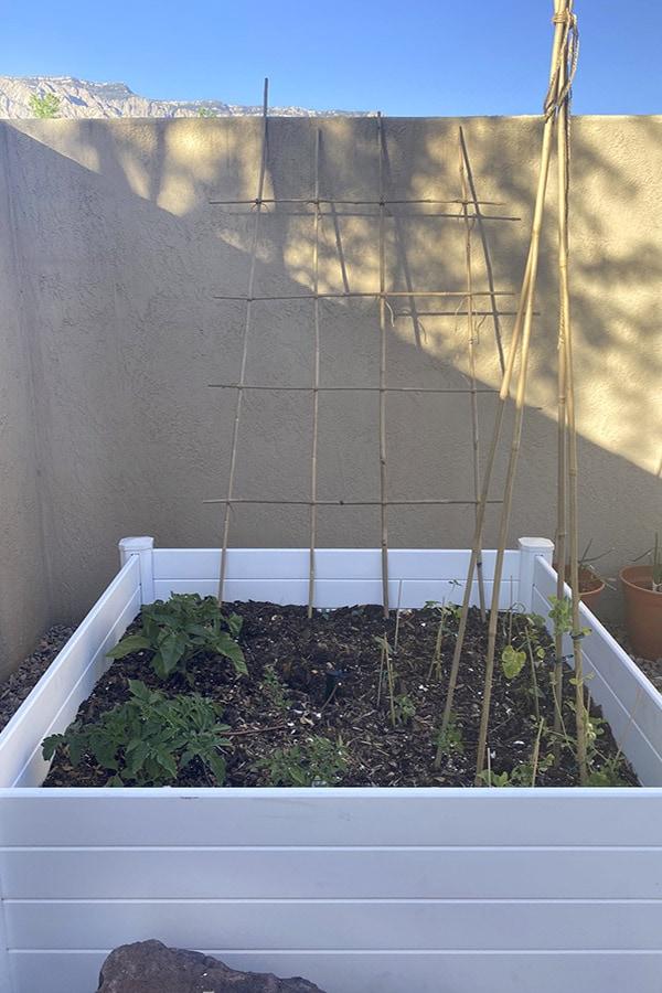 Raised Vegetable Garden Structure