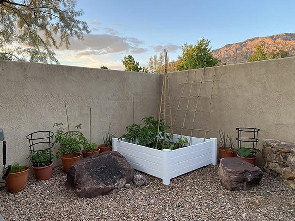 Desert Raised Vegetable Garden