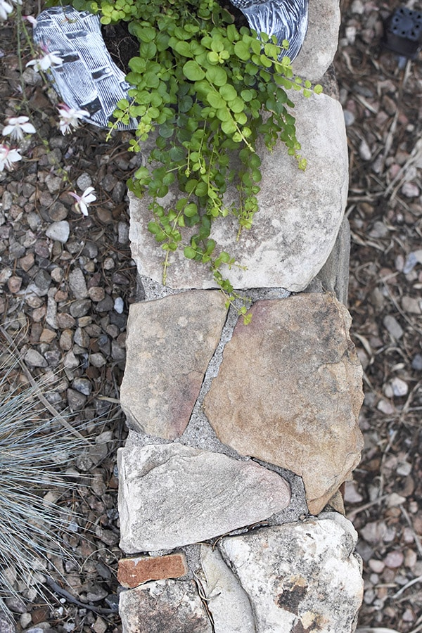 Stone Wall mortar joints