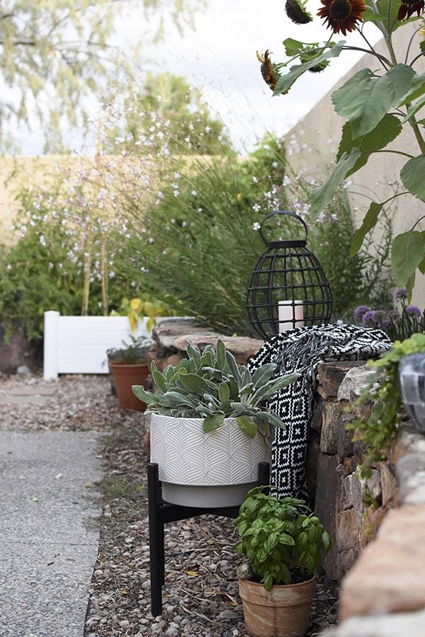 Backyard Stone Wall